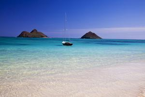 USA, Hawaii, Oahu, Sail Boat at Anchor in Blue Water with Swimmer by Terry Eggers