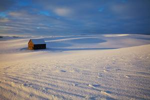 USA, Idaho, Small Barn in Snow Covered Field by Terry Eggers