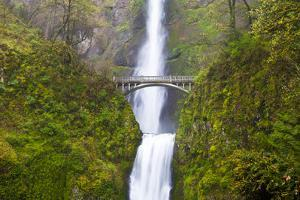 USA, Oregon, Columbia Gorge, Multnomah Falls Cascades from High Above by Terry Eggers
