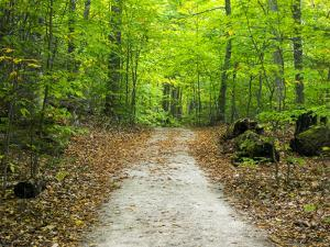 USA, Upper Michigan. Hiking trail in early autumn by Terry Eggers