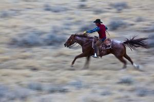 USA, Wyoming, Shell, Cowboy at Full Gallop Riding the Range by Terry Eggers