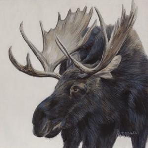 Wayward Moose by Terry Isaac