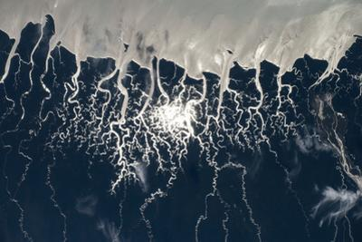 A Multitude of Rivers Reflect Sunlight, Revealing Sinuous Paths across the Land by Terry Virts