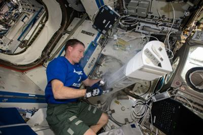 Astronaut Works with the Minus Eighty-Degree Laboratory Freezer for an Iss Experiment by Terry Virts