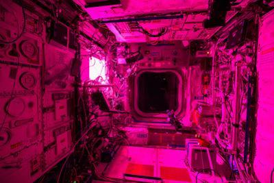 The Columbus Lab Is Illuminated by the Veggie Plant Growth Experiment by Terry Virts