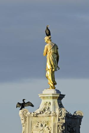 Common Comorants Perched on Statue Drying Out, Bushy Park, London, England, UK, November