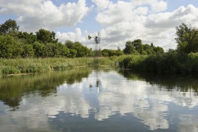 Modern Wind Pump for Pumping Water onto Wicken Fen, Cambridgeshire, UK, June 2011 by Terry Whittaker