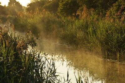 Wicken Lode (Waterway), Wicken Fen, Cambridgeshire, UK, June 2011 by Terry Whittaker