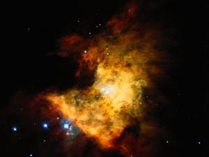 Orion Nebula by Terry Why