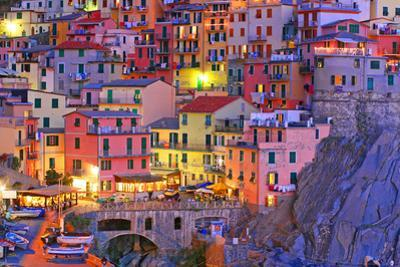 Manarola, Cinque Terre, Italy by TessarTheTegu