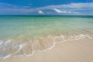 Mexico, Yucatan, Sandy Beach and Turquoise Sea by Tetra Images