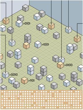 Texture, Computer Language