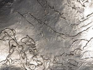 Texture of Shiny Metal Surface