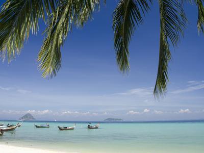 https://imgc.allpostersimages.com/img/posters/thai-longboats-along-the-coast-of-phi-phi-don-island-phuket-andaman-sea-thailand_u-L-PFHPDA0.jpg?artPerspective=n