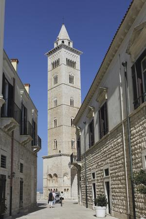 https://imgc.allpostersimages.com/img/posters/the-60-metre-tall-bell-tower-of-the-cathedral-of-st-nicholas-the-pilgrim-san-nicola-pellegrino_u-L-PWFD660.jpg?p=0