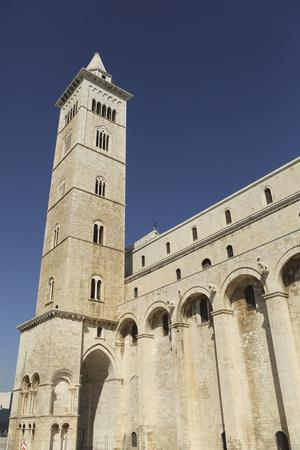 https://imgc.allpostersimages.com/img/posters/the-60m-tall-bell-tower-of-the-cathedral-of-st-nicholas-the-pilgrim-san-nicola-pellegrino_u-L-PWFD760.jpg?p=0