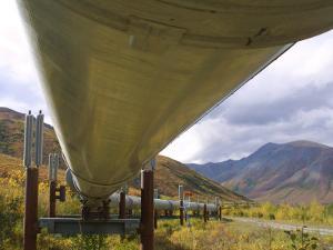The 800-Mile Trans-Alaska Pipeline
