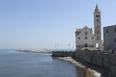 https://imgc.allpostersimages.com/img/posters/the-adriatic-sea-harbour-wall-and-cathedral-of-st-nicholas-the-pilgrim-san-nicola-pellegrino_u-L-PWFCGQ0.jpg?p=0