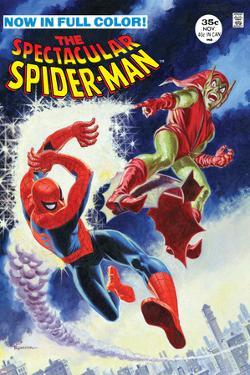 The Amazing Spider-Man No.2 Cover: Spider-Man Fighting