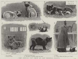 The Annual Cat Show at the Crystal Palace
