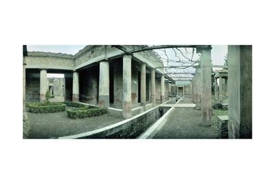 https://imgc.allpostersimages.com/img/posters/the-aquarium-from-house-of-loreio-tiburtino-pompeii-campania_u-L-PRLH4Y0.jpg?p=0