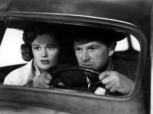 The Asphalt Jungle, Jean Hagen, Sterling Hayden, 1950
