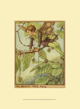 The Beech Tree Fairy