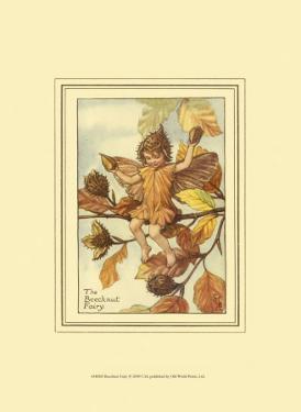 The Beechnut Fairy