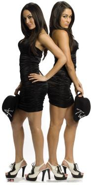 The Bella Twins - WWE