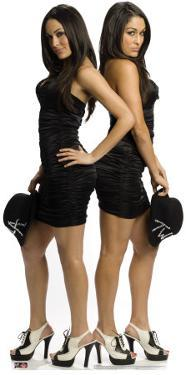 The Bella Twins - WWE