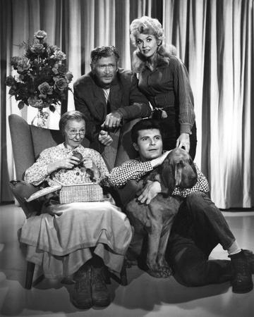 https://imgc.allpostersimages.com/img/posters/the-beverly-hillbillies-1962_u-L-PJTW7R0.jpg?p=0