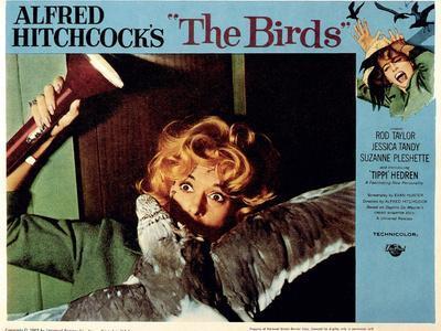 https://imgc.allpostersimages.com/img/posters/the-birds-tippi-hedren-1963_u-L-Q1BUBYR0.jpg?artPerspective=n