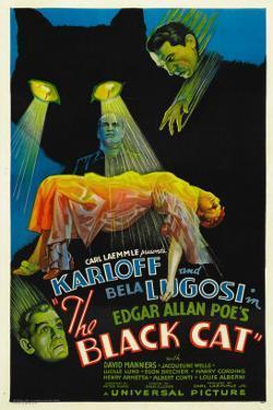 The Black Cat, Boris Karloff, Harry Cording, Jacqueline Wells, Bela Lugosi, 1934