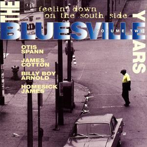 The Bluesville Years: Vol 2: Feelin' Down on the South Side