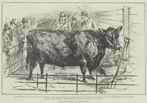 The Cattle-Show at Birmingham
