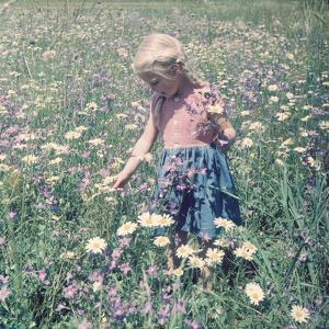 In the Spring Fields by The Chelsea Collection