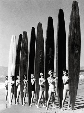 Surfin' Gals by The Chelsea Collection