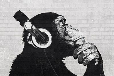 The Chimp Stereo - wall
