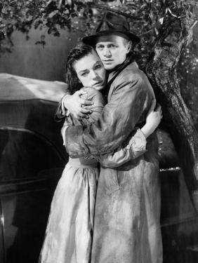 The Cobweb, 1955