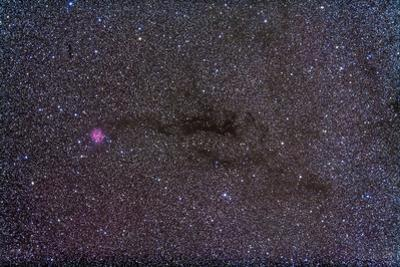 The Cocoon Nebula in the Constellation Cygnus