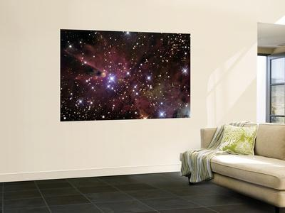 https://imgc.allpostersimages.com/img/posters/the-cone-nebula-and-christmas-tree-cluster_u-L-PFHCHG0.jpg?artPerspective=n