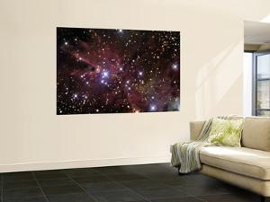 The Cone Nebula and Christmas Tree Cluster