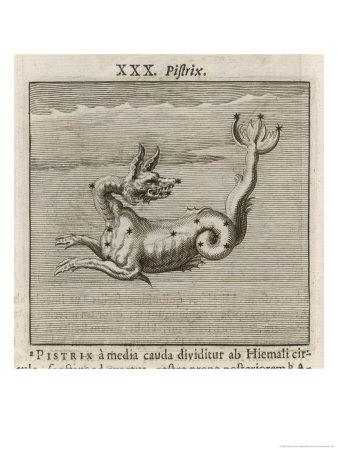 https://imgc.allpostersimages.com/img/posters/the-constellation-of-pistrix-the-sea-monster_u-L-OT22U0.jpg?artPerspective=n