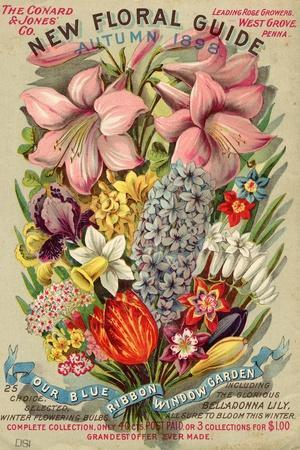https://imgc.allpostersimages.com/img/posters/the-conyard-and-jones-co-new-floral-guide-autumn-1898_u-L-Q1BALUI0.jpg?p=0