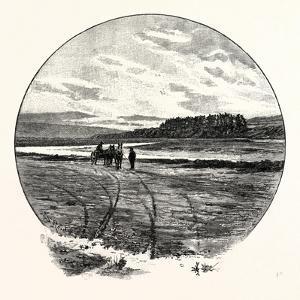 The Coquet at Farnham