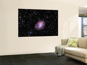 The Crab Nebula