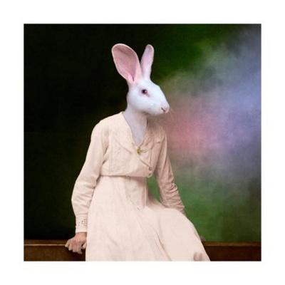 https://imgc.allpostersimages.com/img/posters/the-delicate-lady_u-L-Q1GUD8K0.jpg?p=0
