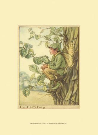 The Elm Fairy