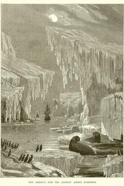 The Erebus and the Terror Among Icebergs
