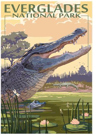 https://imgc.allpostersimages.com/img/posters/the-everglades-national-park-florida-alligator-scene_u-L-F78U1E0.jpg?artPerspective=n